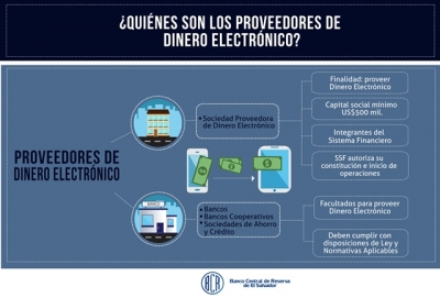 Infografía sobre los proveedores de dinero electrónico