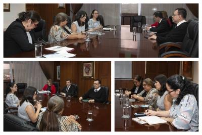 Reunión BCR - ISDEMU y ONU Mujeres ES